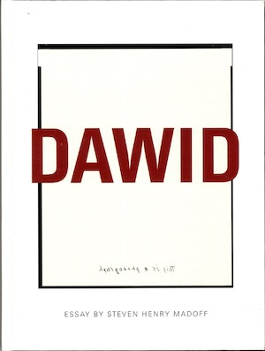 Dawid : this is a photograph / [essay by Steven Henry Madoff]