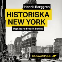 Historiska New York [Elektronisk resurs]
